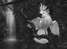 A Talking Bird